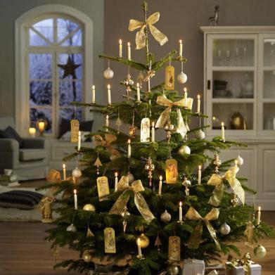WeihnachtsbŠume: Nostalgie