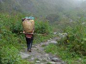 airfreshing_2013_Nepal-Trip_Annapaurna_Sanctuary_Porter-760x570